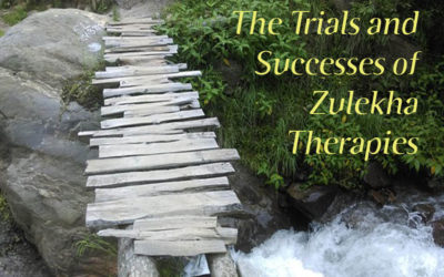 The Trials & Successes of Zulekha Therapies – Part 2